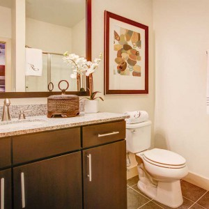 interlocken-apartment-interior-bathroom